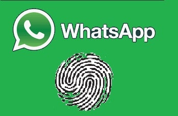 Whatsapp Impronte Digitali
